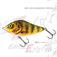 Slider - HOP (Holographic Perch)
